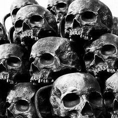 Skull Rose Tattoos, Skull Sleeve Tattoos, Arte Horror, Horror Art, Dark Fantasy Art, Dark Art, Skull Reference, Totenkopf Tattoos, Skull Pictures