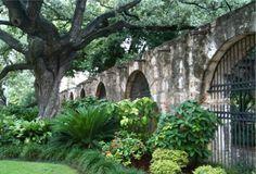 The Alamo - Things to do in San Antonio
