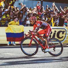 """Nairo Quintana habló sobre el caso Froome antes de disputar la carrera de su país 'Colombia Oro y Paz'. El líder del Movistar Team asegura que el inglés """"debe cumplir la norma"""" tras su positivo en la pasada Vuelta a España.   #EurosportTV #NairoQuintana"""