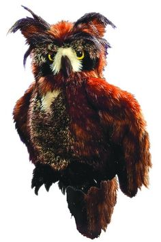 Folkmanis Puppet - Great Horned Owl by Folkmanis can be found at Wild Birds Unlimited, Surrey, BC