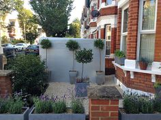 The Distinctive Gardener transforms a typical London terraced front garden, tackling the issue of storage, in only 3 days Garden Solutions, Gardening Services, Contemporary Garden, West London, Terrace, Yard, Patio, Storage, Outdoor Decor