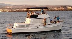 1969 Grand Banks- Sunset Cruise with Friends!
