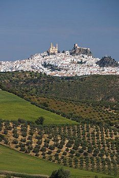 Olvera  Andalucia  Spain