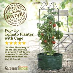 A Review of a Customer Favorite! The Pop-Up Tomato Planter with a Cage (#7575) is reusable and perfect for growing tomatoes right outside your door, or for those with limited space. #Spring #Tomatoes #Gardening #Planter GardenersEdge.com