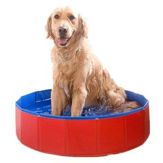 Foldable PVC Dog Swimming Pool Bathing Tub Bathtub Pet Cats Washer 32inch.D x 8inch.H * Review more details here (This is an amazon affiliate link. I may earn commission from it)