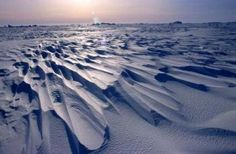 Sastrugis, ondas de gelo formadas por ventos que eriçam a superfície da camada de gelo.  Fotografia: D. Ruché / IPEV.