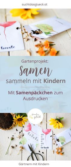 Collect seeds with kids (and a pack of seeds to print) – Freebie Same … - Gartenkunst Autumn Garden, Easy Garden, Garden Crafts, Garden Projects, Planting For Kids, Seed Packaging, Seed Packets, Kids Corner, Amazing Gardens