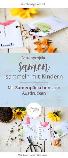 Samen sammeln mit Kindern (und ein Samenpäckchen zum Ausdrucken) - Freebie Samensäckchen - Gärtnern mit Kindern - Gartenprojekt mit Kindern - Fräulein im Glück der nachhaltige Mamablog