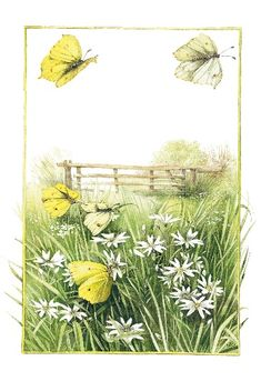 I absolutely love the sketches of Marjolein Bastin--She loves nature as much as I.