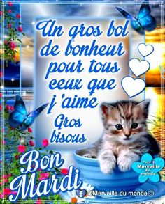 Bon Mardi Humour, Happy Friendship Day, French Quotes, Cinema, Love You, Messages, Funny, Facebook, Bb