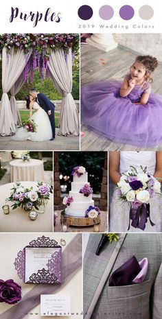 Shades of purple and ivory elegant wedding color palettes Purple Flower Girl Dress - Birthday Wedding party Bridesmaid Holiday Purple Tulle Lace Flower Girl Dress, Purple Tutu Dress Source by quinceanera Lavender Flower Girl Dress, Purple Tutu Dress, Purple Flower Girls, Purple Bridesmaid Dresses, Purple Flowers, Bridesmaid Color, Bridesmaid Bouquets, Wedding Bridesmaids, Elegant Wedding Colors