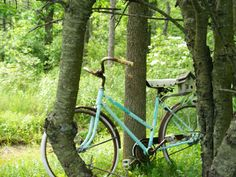 Some yrs i put moss on the wheels and or put an old plaid metal picnic basket beside the bike and plant flowers in it.