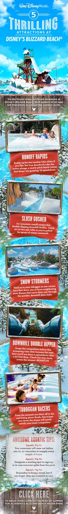 Thrill seekers will find plenty of action at Disney's Blizzard Beach Water Park at Walt Disney World! Discover frosty fun for the whole family while you zip down the slushy slopes of Mount Gushmore on one of the world's tallest and fastest waterslides. Make sure you make time on your family vacation for a visit!
