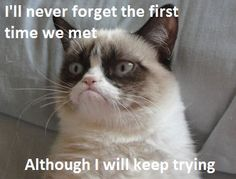 Grumpy cat: I'll never forget the first time we met Although i will keep trying.