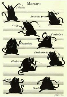 Cats in Art and Illustration: Cat Maestro Crazy Cat Lady, Crazy Cats, Animals And Pets, Cute Animals, Memes Arte, Art Carte, Image Chat, Music Humor, Illustrations