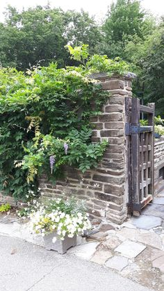 Almost a secret door. Four Square, Stepping Stones, Trail, Canada, Doors, Outdoor Decor, Stair Risers, Gate