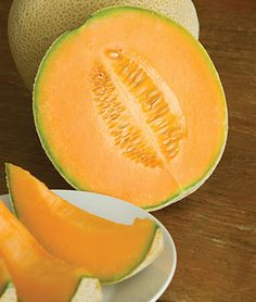 Hales Best Jumbo was developed by a Japanese market gardener in California around 1920. It became widely popular because it combined excellent flavor with earliness. Its a beautiful oval melon with deep green skin and golden netting. The flesh is an appealing salmon color, aromatic and sweet.