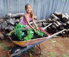 After: Herb Garden Wheelbarrows make a natural planter for herbs and flowers. Just drill some drainage holes and add soil and seedlings. Source: Built by Kids - Built by Kids Diy Projects For Kids, Do It Yourself Projects, Weekend Projects, Garden Projects, Garden Tools, Garden Ideas, Kids Diy, Outdoor Projects, Wheelbarrow Garden