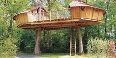 TREE HOUSE – Unique idea for a tree house. Amazing tree house balance.