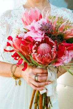 Hibiscus wedding inspiration in a palette of vibrant pink, blue, and sand for a tropical beach wedding with a chic and relaxed twist! Flor Protea, Protea Bouquet, Hibiscus Bouquet, Bouquet Flowers, Protea Wedding, Wedding Bouquets, Wedding Flowers, Bouquet Bride, Wedding Ideas
