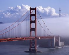 Uncommon Encounter at the Golden Gate by RZ68, via Flickr
