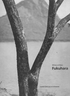 Shinzo et Roso Fukuhara, Photographies 1913 - 1941