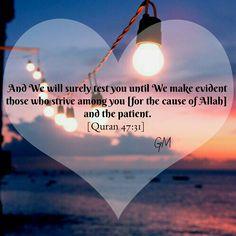 Quran 47:31 Islamic Teachings, Islamic Dua, Islamic Quotes, Quran Verses, Quran Quotes, Quran Sayings, Noble Quran, Islam Religion, Allah Islam