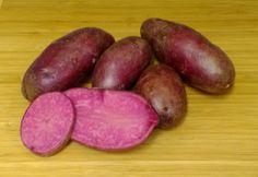 Merlot - Seed Potato