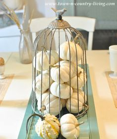 Birdcage Cloche filled with Baby Boos via Town and Country Living