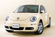Wagen beetle