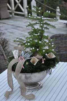 Small fir tree in silver urn accented with ribbon