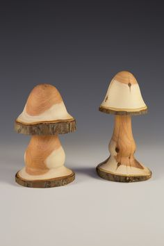Natural edge Yew mushrooms - Simon King