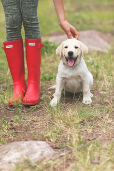 red-hunter-boots + pup