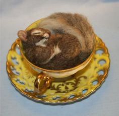 Teacup nesting squirrel ooak needle felt with tea cup and saucer