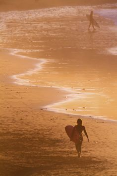 Canteras Sunset by Alex Bramwell dreams, sunset surfer, cantera sunset, alex bramwel, sunsets, beach, surfer girl, sexi surfer, alex o'loughlin