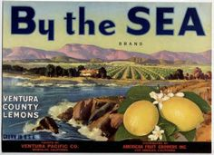 California Vintage Crate Label Art --Ventura County