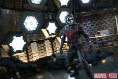 ant-man, paul rudd, marvel
