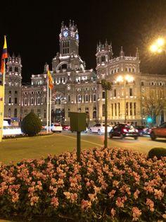 Ayto. Madrid (02/2015)