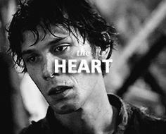 THE HEART Bellamy Blake + Finn Collins Fan