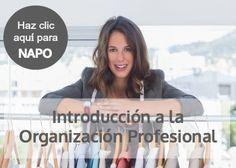 Introducción a la Organización Profesional.