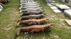 Alligator concrete