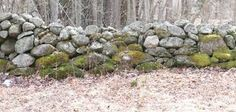 Image result for old stone walls pictures