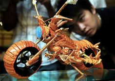 Lobstercycle made from discarded shells - Boing Boing