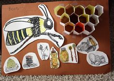 Teaching kids about bees is easy! Find lesson ideas, crafts and tips for teaching kids all about bees! Preschool Science, Science Classroom, Teaching Science, Science Education, Science For Kids, Science Activities, Science Projects, Teaching Kids, Science Ideas