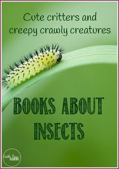 Books about insects for kids; cute critters and creepy crawly creatures from Castle View Academy