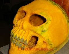 Wow. They must have had to find a pretty crazy shape of pumpkin for this cool pumk-skull. The Best Skull Pumpkin of 2010