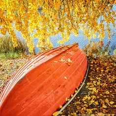 A boat covered with autumn leaves. Lake Palokkajärvi, Jyväskylä - Copyright Sami Hurmerinta / Explodingfish.net. All Rights Reserved. #jyvaskyla #finland #autumn #autumnleaves #fall #lake #landscapephotography