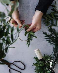 Helppo viinipullon koriste syntyy helposti vihreistä oksista ja rautalangasta
