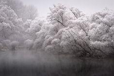 A Frosty Morning on the Rhine Photographed Patrick Hübschmann