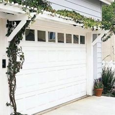 The pergola is quick, but the vines might take a while. See the full transformation here.